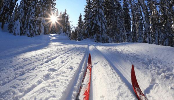 беговые-лыжи-2_0.600x