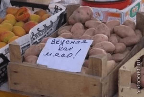 картошка.600x