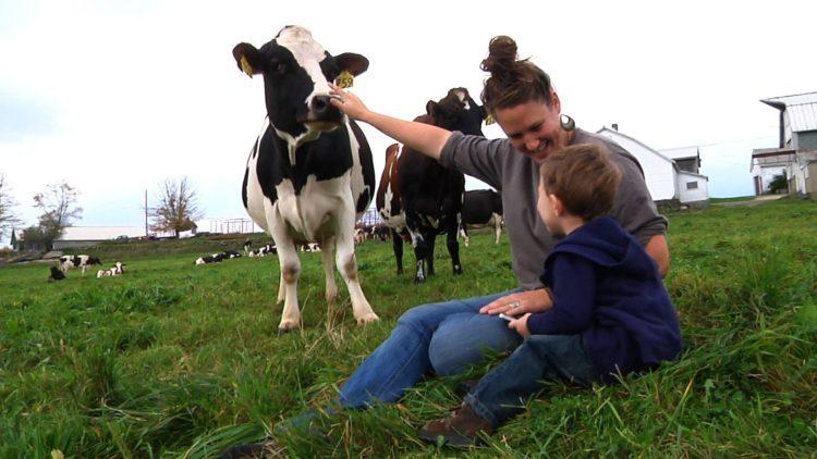 В Саратовской области начинается прием заявок для участия в мероприятиях по развитию семейных животноводческих ферм