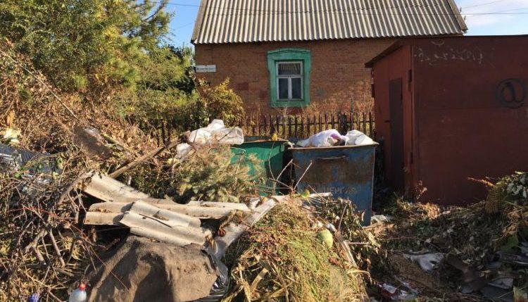 Минприроды РФ разъяснило кто должен вывозить ветки и убирать контейнерные площадки