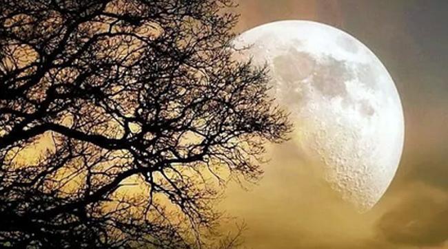 Лунный гороскоп на 7 апреля чем опасно полнолуние