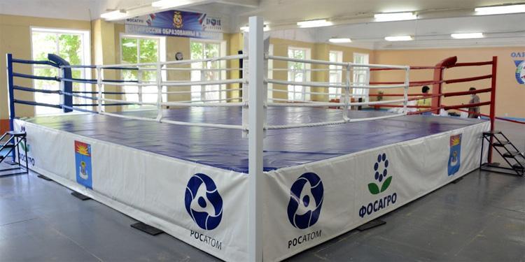Бей первым Фредди Балаковская АЭС подарила городу боксерский ринг международного класса