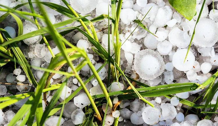 Погода в Балаково на сегодня побьёт ли град посевы
