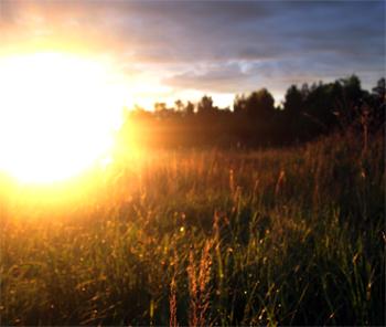 Погода в Балаково на вторник целительное солнце и маньяки в полях