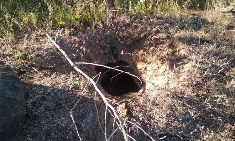 В окрестностях Натальино коза провалилась в резервуар с нефтепродуктами