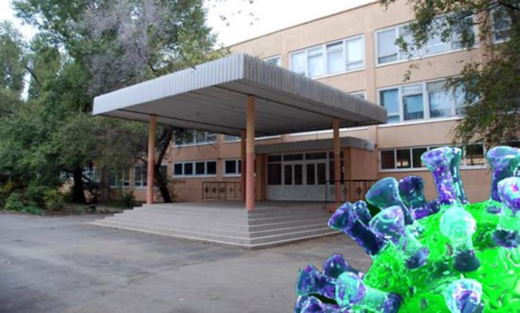 В балаковском лицее № 2 двое детей заболели коронавирусом