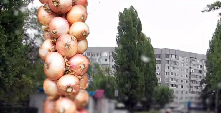 Погода в Балаково в воскресенье что говорили старинные лечебники о борьбе с инфекцией