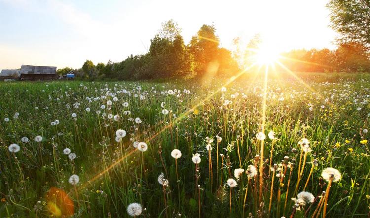 Погода в Балаково на вторник жарко а какой будет осень