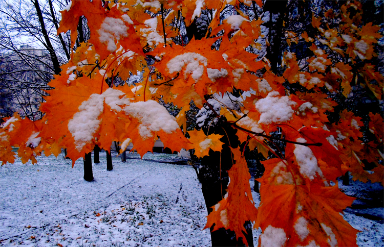 Погода в Балаково на вторник в обед дождь вечером снег