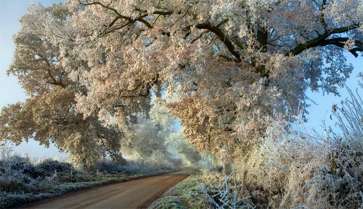 Погода в Балаково на неделю первые морозы дождь и снег