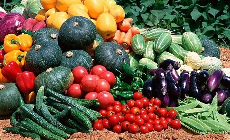 Погода в Балаково на пятницу жди богатого урожая