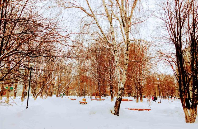 Погода в Балаково 27 января давление идет на снижение