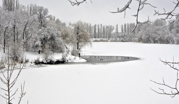 Погода в Балаково 29 января опять весна