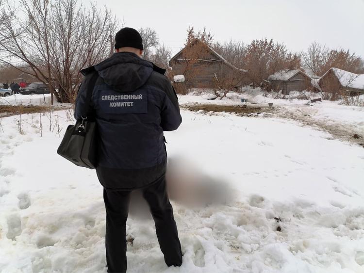 Балаковские следователи обнаружили быка который убил пенсионера в Хвалынске