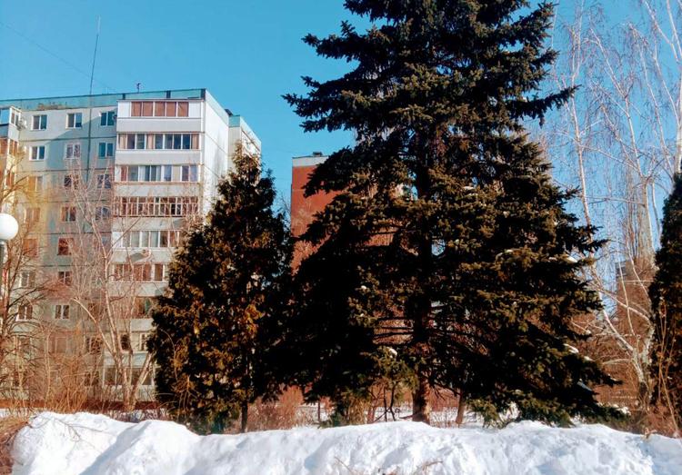 Погода в Балаково на праздничные дни 23 февраля минус 23