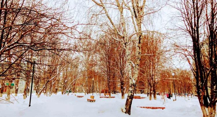 Погода в Балаково на 9 февраля мороз без ветра