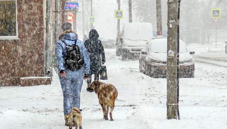 Погода в Балаково на пятницу сильный ветер и слабое давление