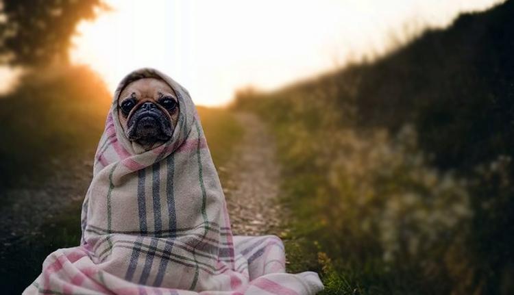 Погода в Балаково на воскресенье: тепло уходит