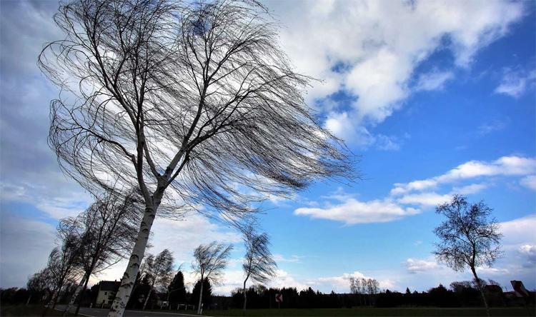 Погода в Балаково на вторник: опять ветер
