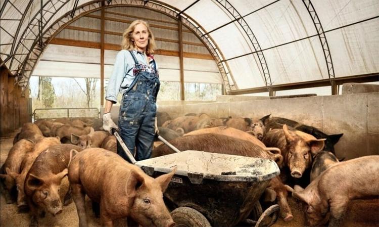 На ферму в село Натальино требуется подсобный рабочий