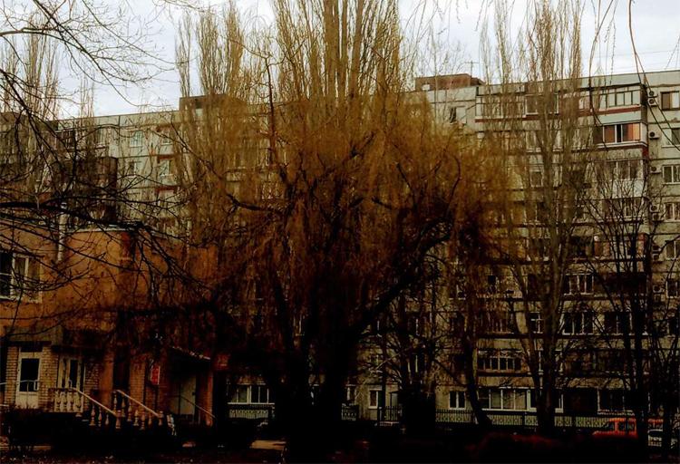 Погода в Балаково на 22 апреля: резкий скачок температуры