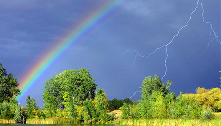 Погода в Балаково на 13 мая: дождь, солнце, гроза