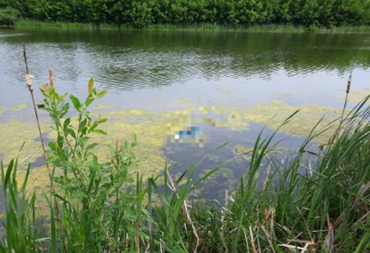 Пропавшую в Духовницком женщину нашли мертвой в реке