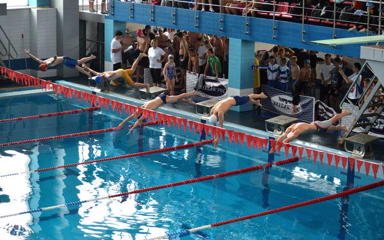 В Балаково стартовали региональные соревнования по плаванию