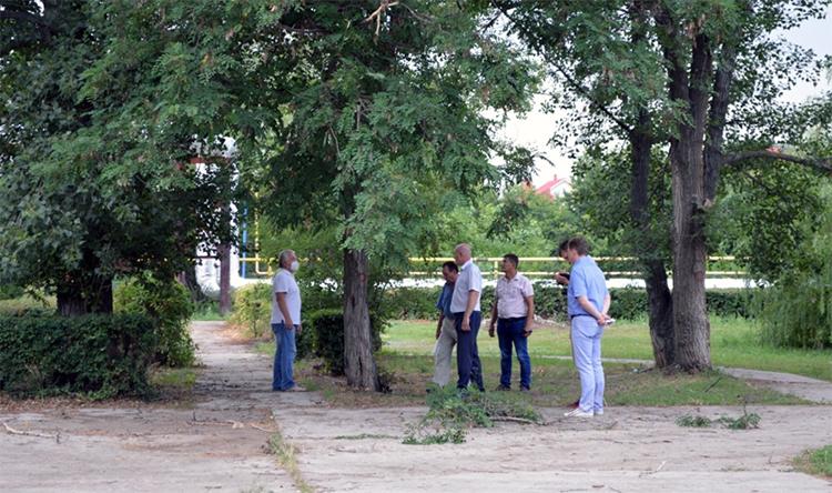 В сквере 8а микрорайона Балаково под контролем жителей высадят новые деревья