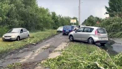 Как спасатели не дали балаковцу прыгнуть с моста: последние новости Балаково за 14 июля