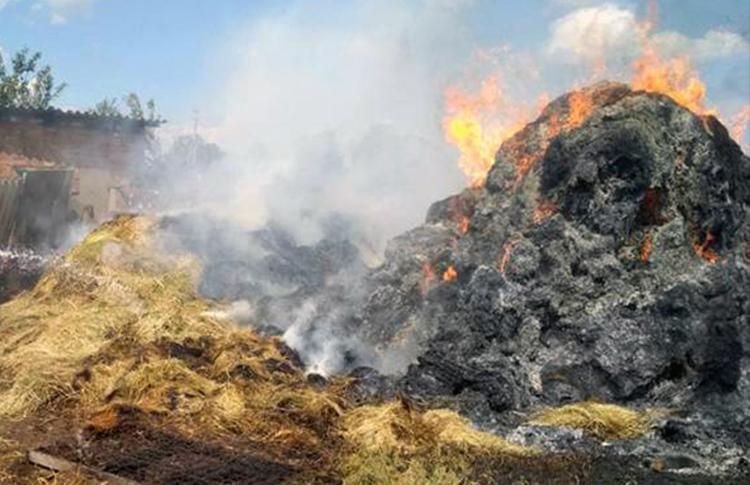 Вчера в Еланке Балаковского района спалили сено