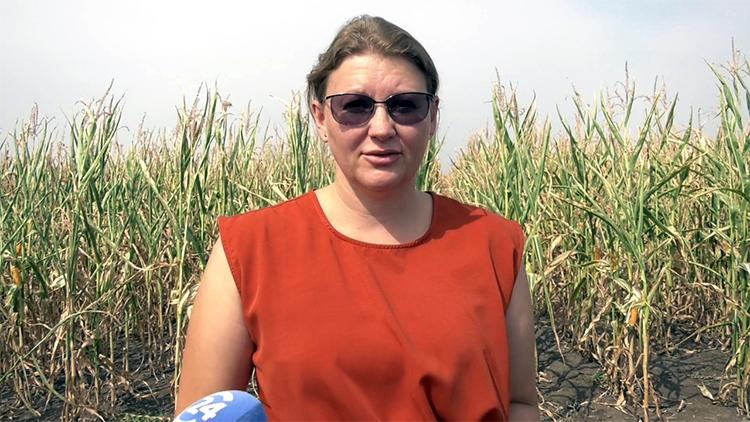 «ФосАгро» убедила сельхозпроизводителей: новое – это хорошо забытое старое